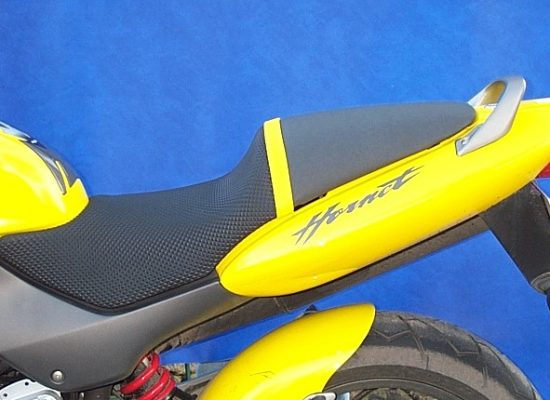 FH-gelb-Hornet600HP